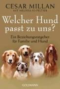 Cover-Bild zu Welcher Hund passt zu uns? von Millan, Cesar