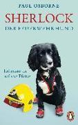 Cover-Bild zu Sherlock, der Feuerwehrhund von Osborne, Paul