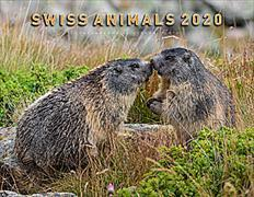 Cover-Bild zu Cal. Swiss Animals Ft. 40x31 2020