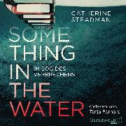Cover-Bild zu Something in the Water - Im Sog des Verbrechens