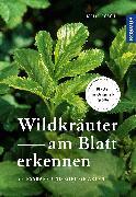 Cover-Bild zu Wildkräuter am Blatt erkennen