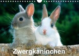 Cover-Bild zu Otmar Diez, Mcphoto: Zwergkaninchen (Wandkalender 2021 DIN A4 quer)