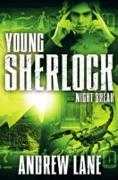 Cover-Bild zu Lane, Andrew: Night Break (eBook)