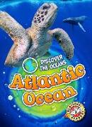 Cover-Bild zu Oachs, Emily Rose: ATLANTIC OCEAN