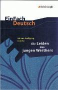 Cover-Bild zu EinFach Deutsch / EinFach Deutsch Textausgaben von Madsen, Hendrik