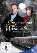 Cover-Bild zu Stoll, Andrea: Ausgerechnet Weihnachten