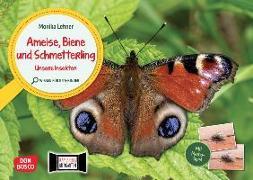 Cover-Bild zu Lehner, Monika: Ameise, Biene und Schmetterling. Unsere Insekten. Kamishibai Bildkarten und Memo-Spiel