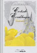 Cover-Bild zu Erotische Erzählungen (eBook) von Klabund