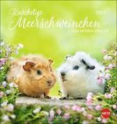 Cover-Bild zu Wegler, Monika: Kuschelige Meerschweinchen Postkartenkalender 2022