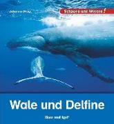 Cover-Bild zu Wale und Delfine von Prinz, Johanna