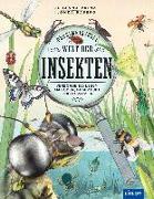 Cover-Bild zu Geheimnisvolle Welt der Insekten von Prinz, Dr. Johanna