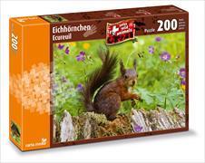 Cover-Bild zu Eichhörnchen