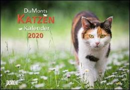 Cover-Bild zu DuMonts Katzenkalender 2020 - Broschürenkalender - Wandkalender - mit Schulferienterminen - Format 42 x 29 cm