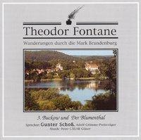 Cover-Bild zu Wanderungen 03 durch die Mark Brandenburg von Fontane, Theodor
