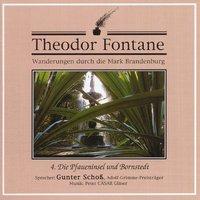 Cover-Bild zu Wanderungen 04 durch die Mark Brandenburg von Fontane, Theodor