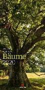 Cover-Bild zu Bäume 2020