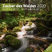 Cover-Bild zu Zauber des Waldes 2020