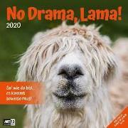 Cover-Bild zu No Drama, Lama! 2020
