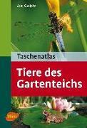 Cover-Bild zu Taschenatlas Tiere des Gartenteichs (eBook) von Gutjahr, Axel
