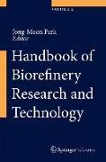 Cover-Bild zu Handbook of Biorefinery Research and Technology (eBook)