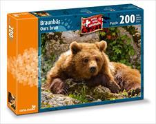 Cover-Bild zu Braunbär
