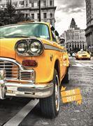 Cover-Bild zu Feelings daily A6 Yellow Cab 2016/2017