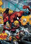 Cover-Bild zu Michelinie, David: Spider-Man by David Michelinie and Erik Larsen Omnibus