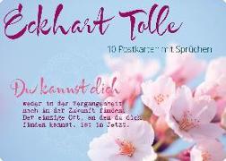 Cover-Bild zu Zintenz: Postkartenset Eckhart Tolle