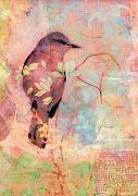 Cover-Bild zu Zintenz: Budda-Karte: Vogel