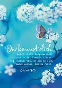 """Cover-Bild zu Zintenz: Eckhart Tolle Postkarten """"Du kannst dich"""""""