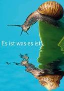 Cover-Bild zu ZintenZ: Weisheits-Postkarte: Es ist was es ist