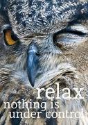 Cover-Bild zu ZintenZ: Weisheits-Postkarte: relax nothing is under control