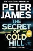 Cover-Bild zu The Secret of Cold Hill