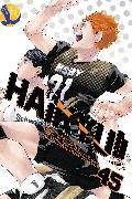 Cover-Bild zu Furudate, Haruichi: Haikyu!!, Vol. 45