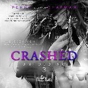 Cover-Bild zu Crashed (Audio Download) von Chapman, Penny L.