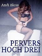 Cover-Bild zu Pervers hoch drei (eBook) von Anonym