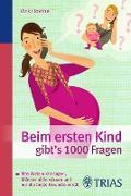 Cover-Bild zu Beim ersten Kind gibt's 1000 Fragen (eBook) von Iovine, Vicki