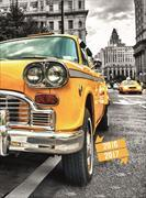 Cover-Bild zu Feelings daily A6 Yellow Cab 2016/2017