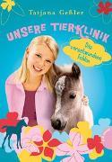 Cover-Bild zu Unsere Tierklinik 6: Das verschwundene Fohlen von Geßler, Tatjana