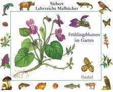 Cover-Bild zu Frühlingsblumen im Garten
