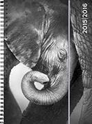 Cover-Bild zu Animals daily A6 Elephant 2015/2016