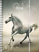 Cover-Bild zu Animals daily A6 Horse 2015/2016
