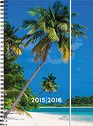 Cover-Bild zu Emotions weekly A5 Palm Tree 2015/2016