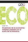 Cover-Bild zu Cicatrices de la economía: metales pesados en el suelo de la industria von Korol, Antonina