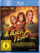 Cover-Bild zu Tiger Team - Der Berg der 1000 Drachen von Brezina, Thomas