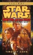 Cover-Bild zu Zahn, Timothy: Specter of the Past: Star Wars Legends (The Hand of Thrawn)