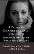 Cover-Bild zu A Primer of Transference-Focused Psychotherapy for the Borderline Patient von Yeomans, Frank E.