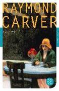 Cover-Bild zu Kathedrale von Carver, Raymond