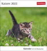 Cover-Bild zu Harenberg (Hrsg.): Katzen Kalender 2022