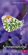 Cover-Bild zu Schmetterlinge von Reichholf, Josef